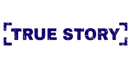 TRUE STORY text seal watermark with grunge texture. Text tag is placed between corners. Blue vector rubber print of TRUE STORY with grunge texture. 일러스트