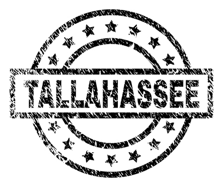 TALLAHASSEE stamp seal watermark with distress style. Designed with rectangle, circles and stars. Black vector rubber print of TALLAHASSEE title with scratched texture.
