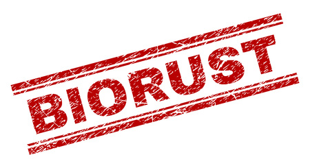 BIORUST seal print with grunge texture. Red vector rubber print of BIORUST text with retro texture. Text caption is placed between double parallel lines. Vektoros illusztráció