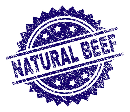 NATURAL BEEF stamp seal watermark with distress style. Blue vector rubber print of NATURAL BEEF caption with grunge texture. Illusztráció