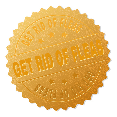 GET RID OF FLEAS gold stamp award. Vector gold award with GET RID OF FLEAS caption. Text labels are placed between parallel lines and on circle. Golden skin has metallic structure.