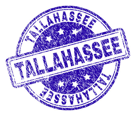 TALLAHASSEE stamp seal imprint with grunge texture. Designed with rounded rectangles and circles. Blue vector rubber print of TALLAHASSEE text with grunge texture. Illustration
