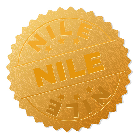 NILE gold stamp medallion. Vector golden medal with NILE text. Text labels are placed between parallel lines and on circle. Golden area has metallic texture.