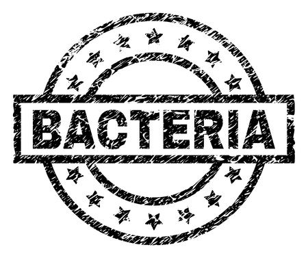 BACTERIA stamp seal watermark with distress style. Designed with rectangle, circles and stars. Black vector rubber print of BACTERIA label with grunge texture. Illustration