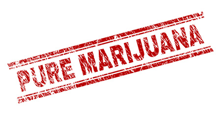 PURE MARIJUANA seal print with distress texture. Red vector rubber print of PURE MARIJUANA caption with scratched texture. Text caption is placed between double parallel lines.