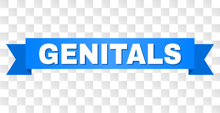 GENITALS text on a ribbon. Designed with white title and blue stripe. Vector banner with GENITALS tag on a transparent background.