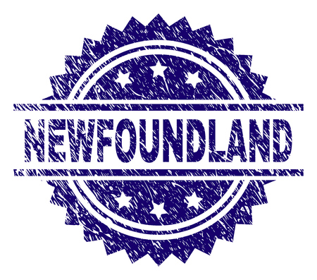 NEWFOUNDLAND stamp seal watermark with distress style. Blue vector rubber print of NEWFOUNDLAND caption with scratched texture.
