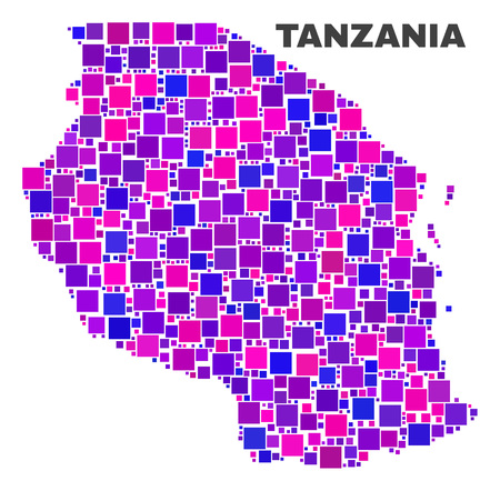 Mosaic Tanzania map isolated on a white background. Vector geographic abstraction in pink and violet colors. Mosaic of Tanzania map combined of scattered square elements.  イラスト・ベクター素材