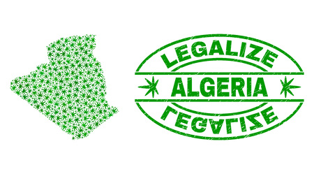 Vector cannabis Algeria map collage and grunge textured Legalize stamp seal. Concept with green weed leaves. Concept for cannabis legalize campaign. Vector Algeria map is created of weed leaves.