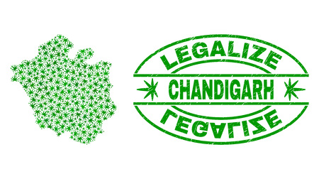 Vector cannabis Chandigarh City map collage and grunge textured Legalize stamp seal. Concept with green weed leaves. Concept for cannabis legalize campaign. Illustration