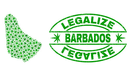 Vector cannabis Barbados map mosaic and grunge textured Legalize stamp seal. Concept with green weed leaves. Template for cannabis legalize campaign.