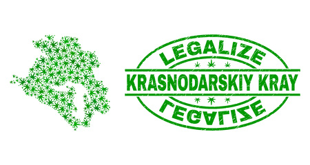 Vector marijuana Krasnodarskiy Kray map mosaic and grunge textured Legalize stamp seal. Concept with green weed leaves. Concept for cannabis legalize campaign.