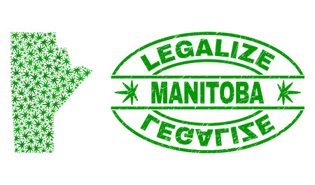 Vector cannabis Manitoba Province map mosaic and grunge textured Legalize stamp seal. Concept with green weed leaves. Concept for cannabis legalize campaign.