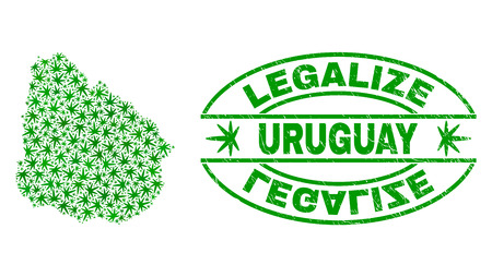 Vector cannabis Uruguay map collage and grunge textured Legalize stamp seal. Concept with green weed leaves. Concept for cannabis legalize campaign. Vector Uruguay map is organized with herbal leaves.