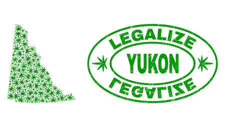 Vector cannabis Yukon Province map mosaic and grunge textured Legalize stamp seal. Concept with green weed leaves. Template for cannabis legalize campaign.