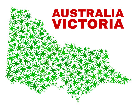 Vector marijuana Australian Victoria map mosaic. Template with green weed leaves for cannabis legalize campaign. Vector Australian Victoria map is created with marijuana leaves. Ilustrace