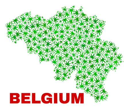 Vector cannabis Belgium map mosaic. Concept with green weed leaves for cannabis legalize campaign. Vector Belgium map is constructed with cannabis leaves.