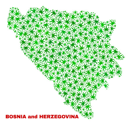 Vector marijuana Bosnia and Herzegovina map collage. Template with green weed leaves for marijuana legalize campaign. Vector Bosnia and Herzegovina map is constructed from marijuana leaves.