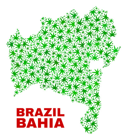 Vector marijuana Bahia State map collage. Template with green weed leaves for marijuana legalize campaign. Vector Bahia State map is formed from marijuana leaves. Ilustrace