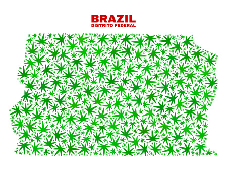 Vector marijuana Brazil Distrito Federal map collage. Template with green weed leaves for weed legalize campaign. Vector Brazil Distrito Federal map is organized with cannabis leaves.