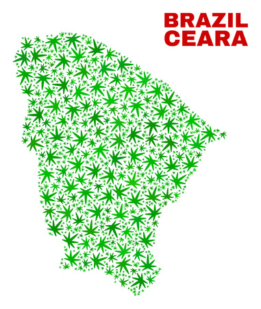 Vector cannabis Ceara state map mosaic. Concept with green weed leaves for cannabis legalize campaign. Vector Ceara state map is designed with ganja leaves. Ilustrace