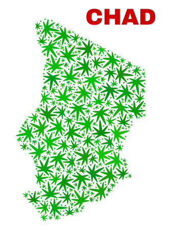 Vector cannabis Chad map collage. Template with green weed leaves for weed legalize campaign. Vector Chad map is organized with cannabis leaves.