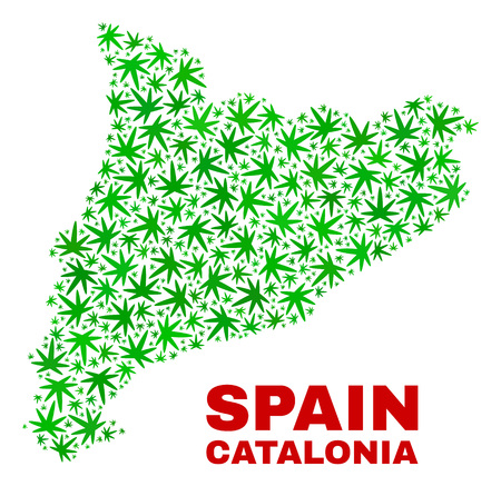 Vector cannabis Catalonia map mosaic. Concept with green weed leaves for weed legalize campaign. Vector Catalonia map is designed from weed leaves.