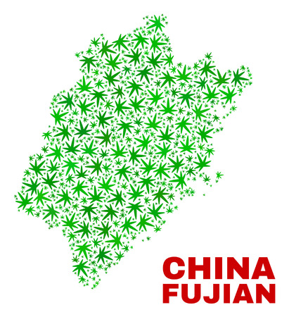Vector cannabis Fujian Province map mosaic. Concept with green weed leaves for cannabis legalize campaign. Vector Fujian Province map is composed with weed leaves.