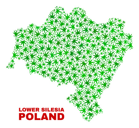 Vector cannabis Lower Silesia Province map mosaic. Template with green weed leaves for weed legalize campaign. Vector Lower Silesia Province map is formed with weed leaves.