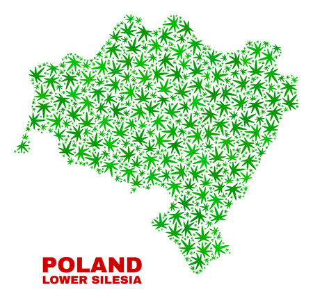 Vector marijuana Lower Silesian Voivodeship map collage. Template with green weed leaves for marijuana legalize campaign. Vector Lower Silesian Voivodeship map is created with herbal leaves.