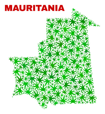 Vector marijuana Mauritania map mosaic. Concept with green weed leaves for weed legalize campaign. Vector Mauritania map is designed with marijuana leaves.