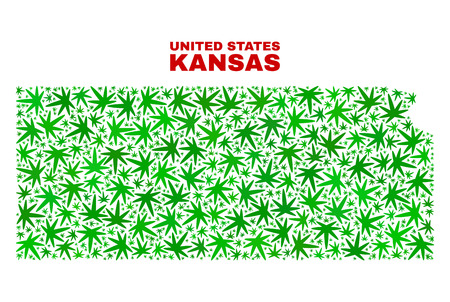 Vector marijuana Kansas State map mosaic. Concept with green weed leaves for weed legalize campaign. Vector Kansas State map is composed with ganja leaves.