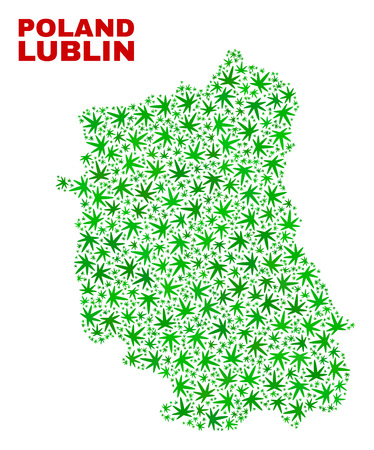 Vector marijuana Lublin Voivodeship map collage. Template with green weed leaves for marijuana legalize campaign. Vector Lublin Voivodeship map is composed with marijuana leaves.