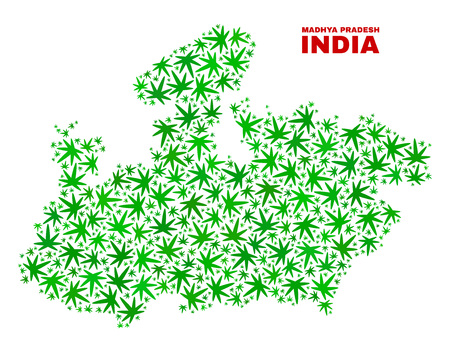 Vector cannabis Madhya Pradesh State map collage. Concept with green weed leaves for weed legalize campaign. Vector Madhya Pradesh State map is created with cannabis leaves.