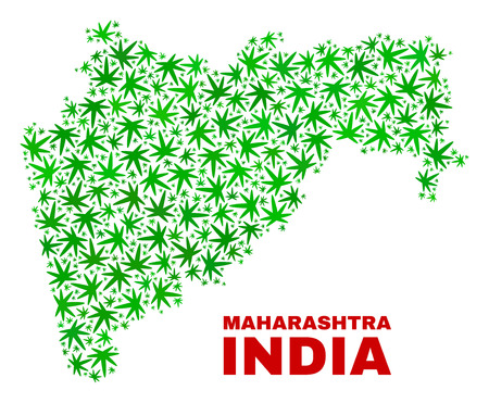 Vector cannabis Maharashtra State map collage. Concept with green weed leaves for cannabis legalize campaign. Vector Maharashtra State map is organized with cannabis leaves. Ilustração