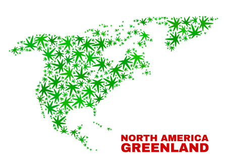 Vector cannabis North America and Greenland map collage. Template with green weed leaves for cannabis legalize campaign. Vector North America and Greenland map is constructed with cannabis leaves.