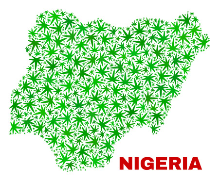 Vector cannabis Nigeria map collage. Concept with green weed leaves for weed legalize campaign. Vector Nigeria map is composed with weed leaves.
