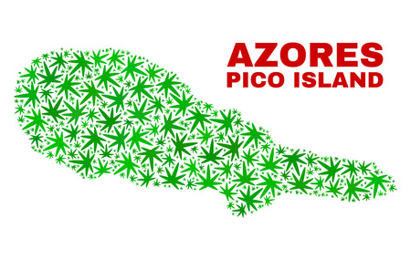 Vector cannabis Pico Island map collage. Template with green weed leaves for cannabis legalize campaign. Vector Pico Island map is created with weed leaves.