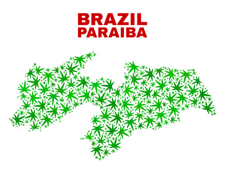 Vector marijuana Paraiba State map mosaic. Concept with green weed leaves for weed legalize campaign. Vector Paraiba State map is organized with marijuana leaves. Ilustrace