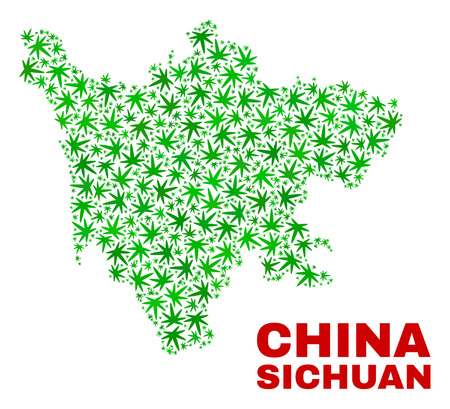 Vector marijuana Sichuan Province map mosaic. Concept with green weed leaves for marijuana legalize campaign. Vector Sichuan Province map is composed of weed leaves.