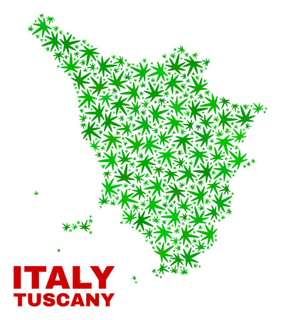 Vector cannabis Tuscany region map mosaic. Concept with green weed leaves for cannabis legalize campaign. Vector Tuscany region map is designed with herbal leaves.