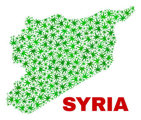 Vector marijuana Syria map collage. Template with green weed leaves for weed legalize campaign. Vector Syria map is formed with marijuana leaves. Illustration