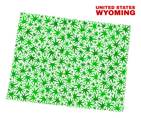 Vector marijuana Wyoming State map collage. Concept with green weed leaves for weed legalize campaign. Vector Wyoming State map is designed of weed leaves.