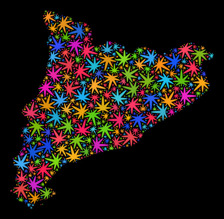 Bright vector cannabis Catalonia map collage on a black background. Concept with bright herbal leaves for cannabis legalize campaign. Vector Catalonia map is composed with cannabis leaves. Illustration