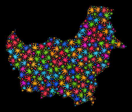 Bright vector marijuana Borneo map mosaic on a black background. Template with colorful weed leaves for weed legalize campaign. Vector Borneo map is created with marijuana leaves. Illustration