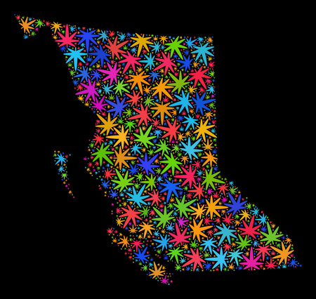 Bright vector marijuana British Columbia map mosaic on a black background. Concept with psychedelic weed leaves for marijuana legalize campaign. 向量圖像