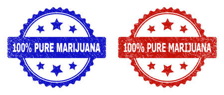 Rosette 100% PURE MARIJUANA seal stamps. Flat vector scratched seal stamps with 100% PURE MARIJUANA message inside rosette with stars, in blue and red color variants.