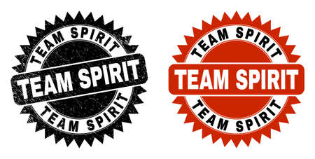 Black rosette TEAM SPIRIT watermark. Flat vector grunge seal with TEAM SPIRIT title inside sharp rosette, and original clean source. Watermark with unclean texture.
