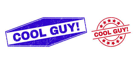 COOL GUY! badges. Red circle and blue flatten hexagonal COOL GUY! rubber imprints. Flat vector scratched seals with COOL GUY! phrase inside circle and flatten hexagonal shapes. Ilustrace