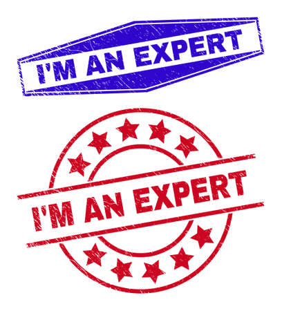 IM AN EXPERT stamps. Red rounded and blue flatten hexagon IM AN EXPERT seals. Flat vector distress watermarks with IM AN EXPERT message inside rounded and expanded hexagonal shapes.
